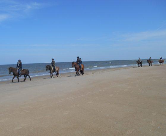 Paardrijden en zeilen Waddenzee